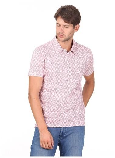 Kip Kip T-Shirt Somon